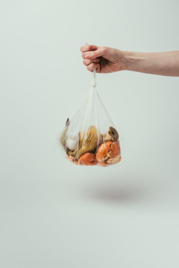 kantjusterat skott av den hållande plastpåsen för kvinna med avfall på grå bakgrund royaltyfri fotografi