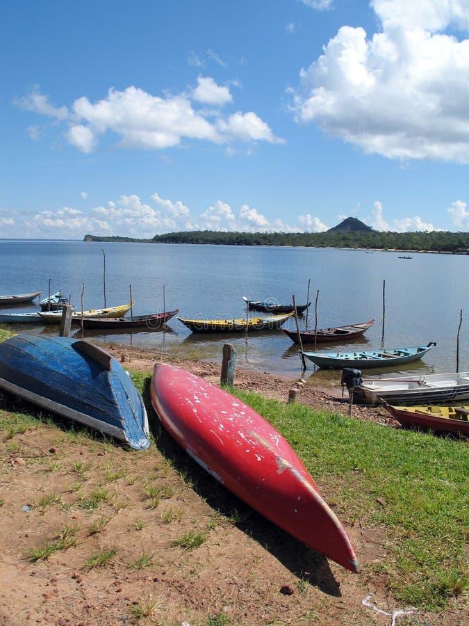 Kanus auf Amazonas-Fluss stockbilder