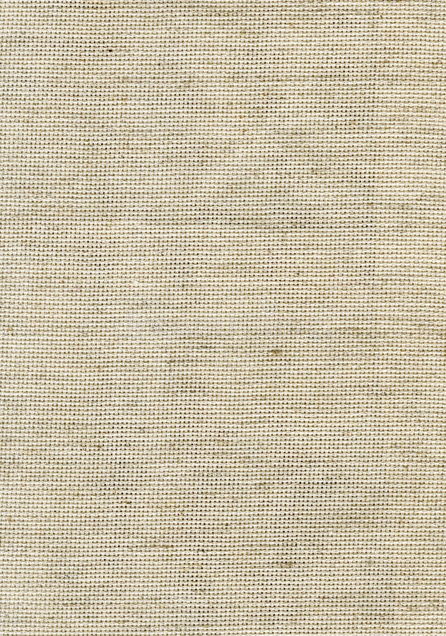 Download Kanwy grey obraz stock. Obraz złożonej z charcica, greaser - 15607683