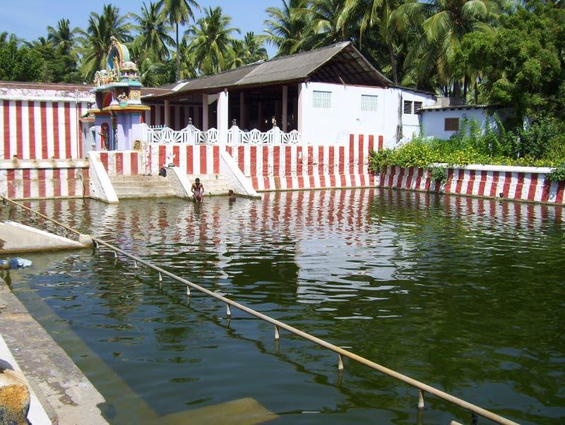 Kanyakumari, Tamil Nadu, пруд зеленого цвета Индии - 8-ое октября 2008 a малый около виска Nagaraja стоковое фото