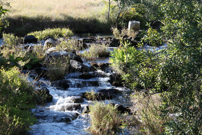 Kaombe flod Zambia arkivfoton