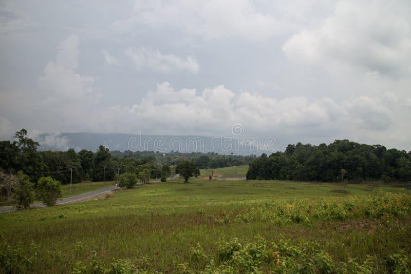 Kaoyai nationparkgata arkivfoto