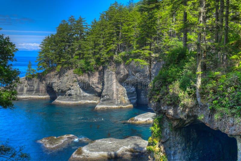 Kap-Schmeichelei auf Nord-Washington Coast lizenzfreie stockfotos