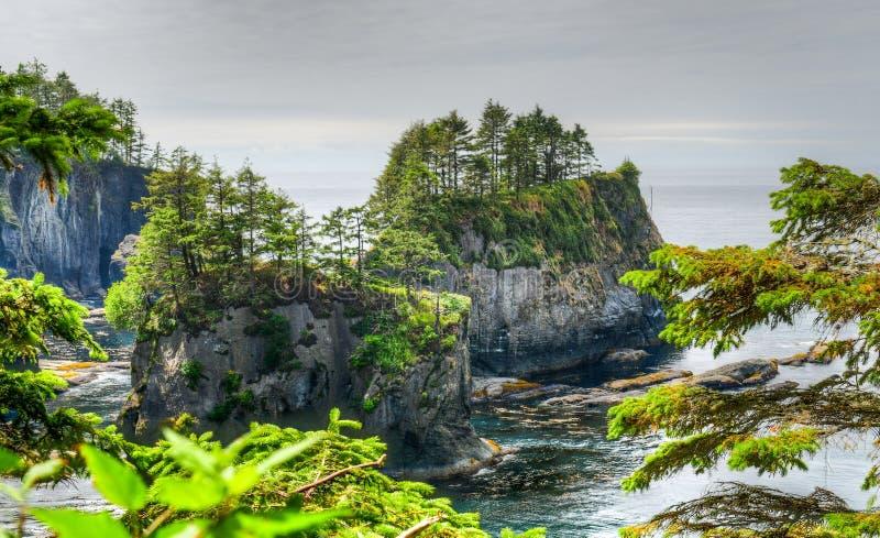 Kap-Schmeichelei auf Nord-Washington Coast lizenzfreie stockfotografie