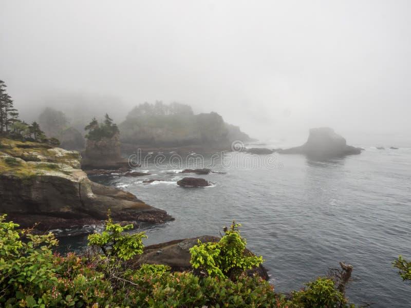 Kap-Schmeichelei im Nebel stockbild