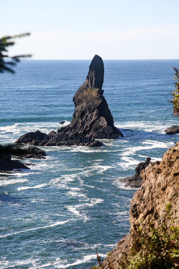 Kap-Schmeichelei, Nordwesttipp von USA, olympische Halbinsel lizenzfreies stockfoto