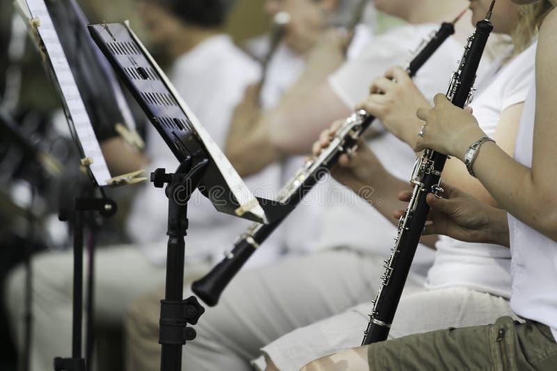 Kapacitet för symfoniorkester royaltyfri foto