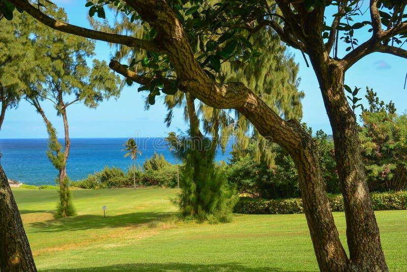 Kapalua, Maui, îles hawaïennes images stock