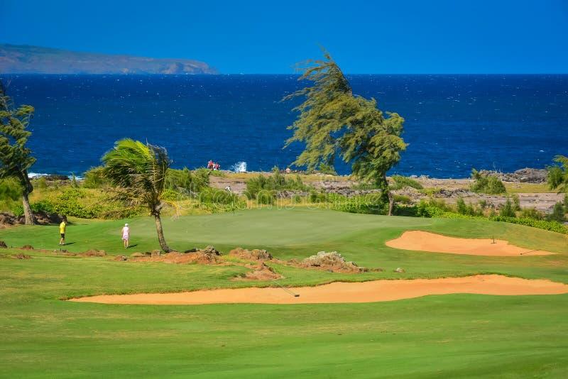 Kapalua, Maui, îles hawaïennes photographie stock libre de droits