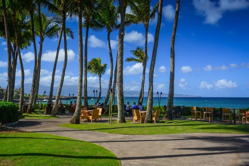 Kapalua, Maui, distacco Fleming Beach, isole hawaiane immagine stock