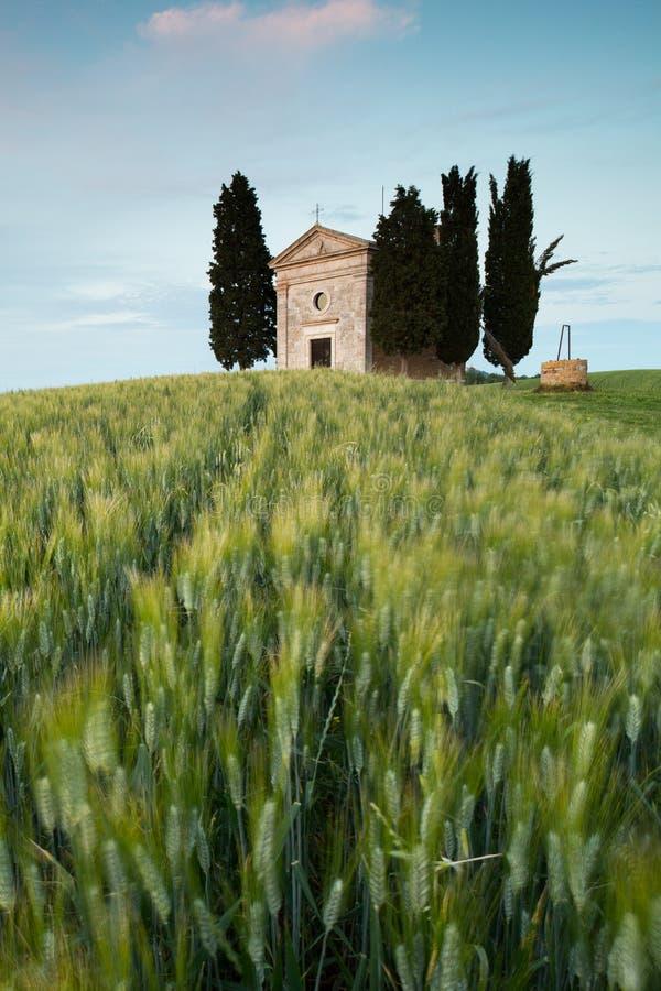 Kapel in Toscaanse heuvels stock afbeelding