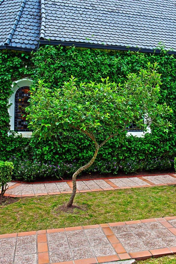 Kapell med gröna träd arkivfoto