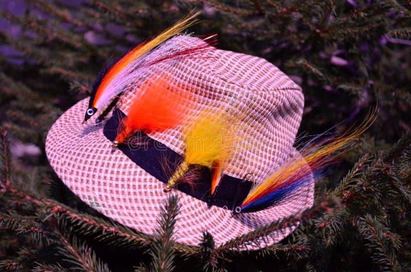 Kapelusz dla łowić flyfishing, natura, drzewo, jodła streamer, czas wolny, bawi się zdjęcie stock