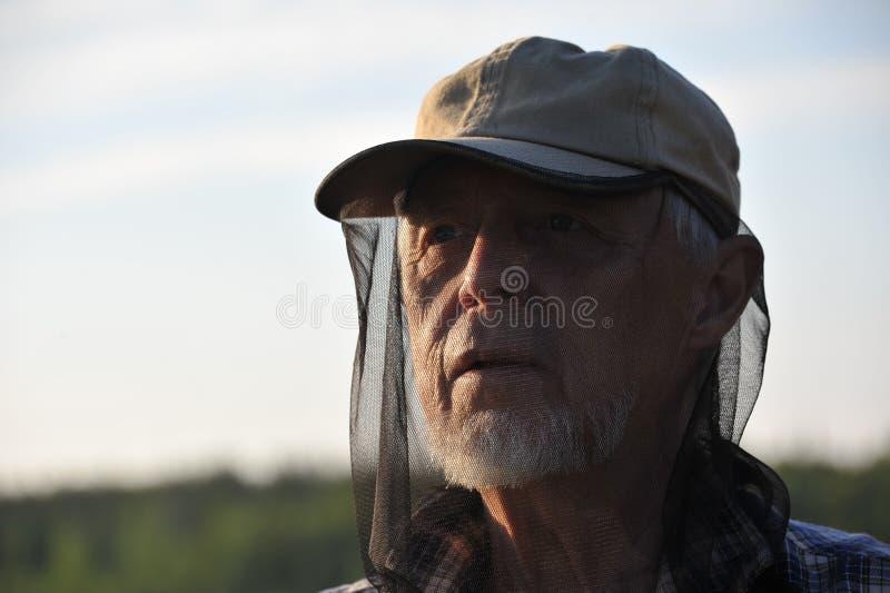 kapeluszowy komar obrazy stock
