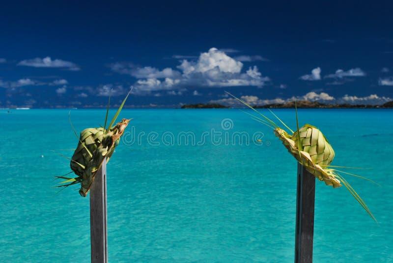 kapeluszy liść palma dwa obrazy stock