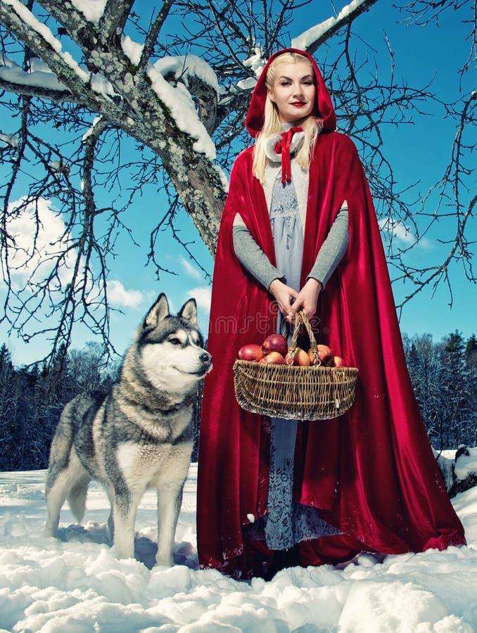 Download Kapiszon Czerwień Obrazy Royalty Free - Obraz: 19521119