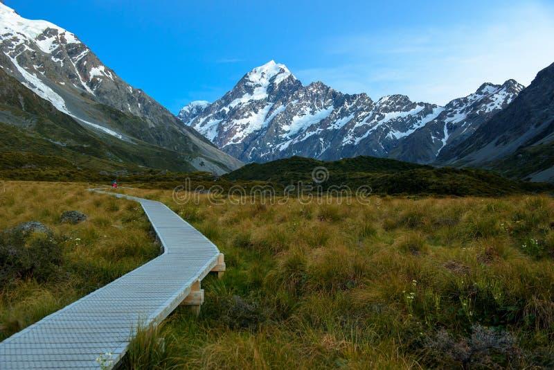 kapiszon krajobrazowy mt Kucbarski park narodowy, Nowa Zelandia zdjęcie stock