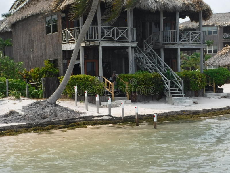 Kapiteinsmorgan's San Pedro, Amber Caye Belize stock afbeelding