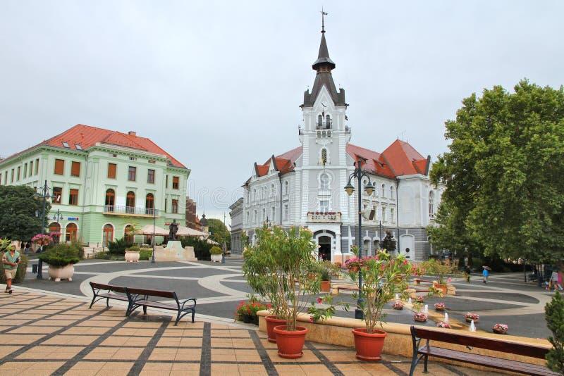 Kaposvar,匈牙利 免版税库存照片