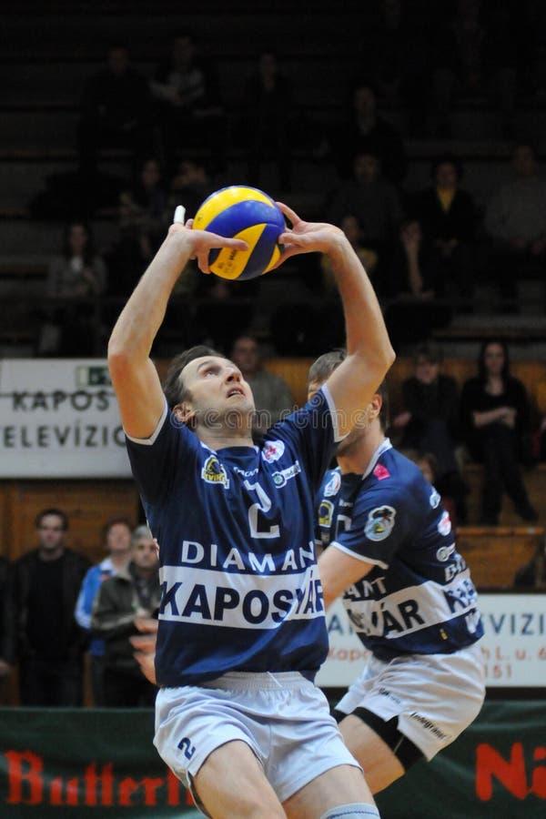 Kaposvar - het volleyballspel van Mladost Zagreb royalty-vrije stock afbeelding