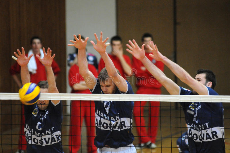 Kaposvar - het volleyballspel van Mladost Zagreb royalty-vrije stock foto's