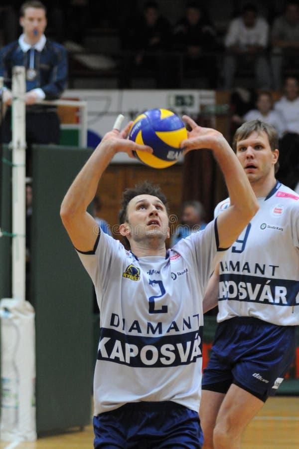 Kaposvar - het volleyballspel van Salonit Anhovo stock foto's
