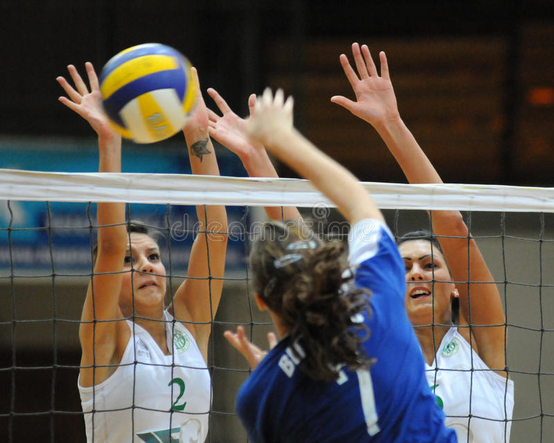 Kaposvar - Miskolc volleyball game royalty free stock photo