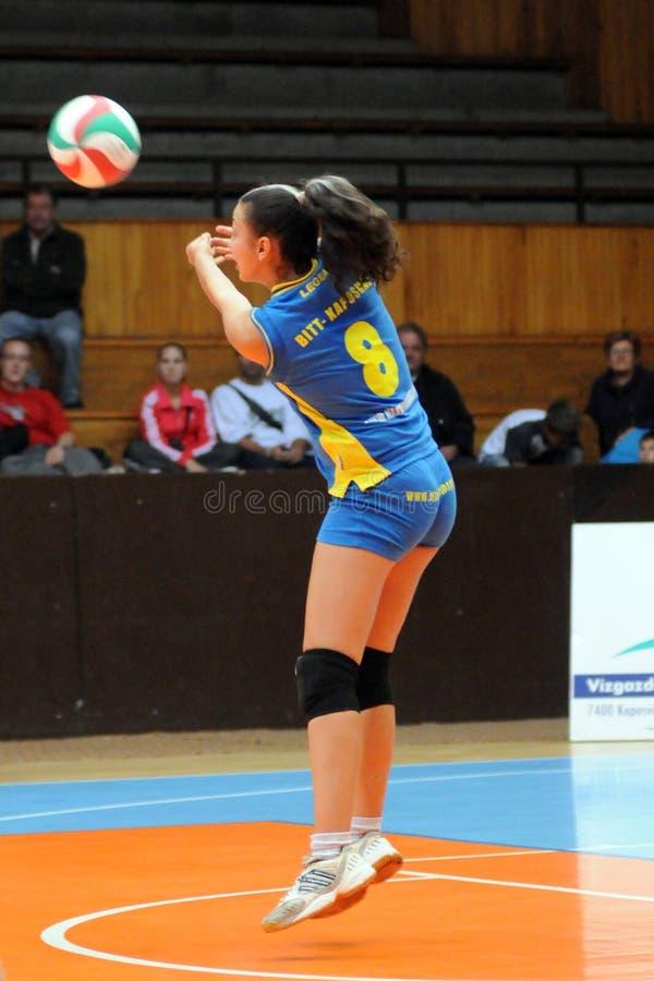 Kaposvar - Szolnok volleyballspel stock afbeelding