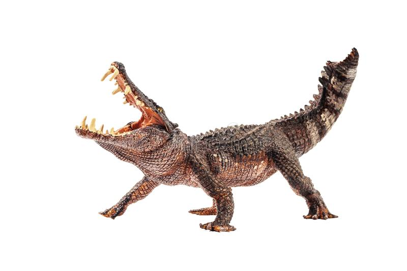 Kaprosuchus, δεινόσαυρος στο άσπρο υπόβαθρο στοκ φωτογραφίες