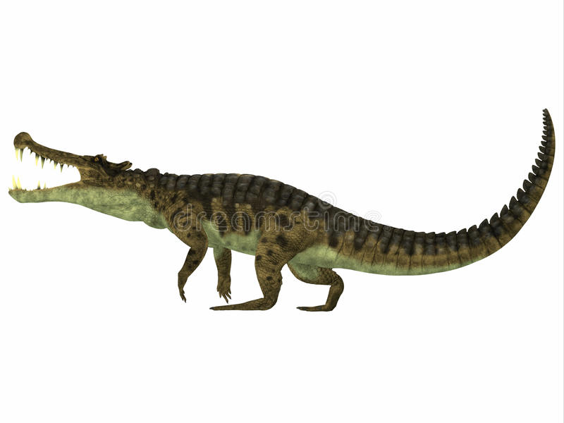 Kaprosuchusprofiel stock illustratie