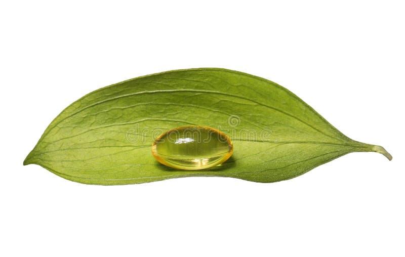 Kapsel för fiskolja och nytt blad. Vitaminpreventivpillerar A eller Omega-3 royaltyfri fotografi