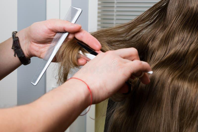 Kapsel van lang haar van het meisje, verwijdering van gespleten punten stock afbeeldingen