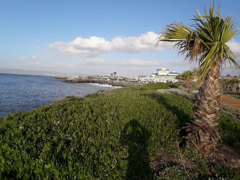 Kapstadt-Ozeanufer stockbild