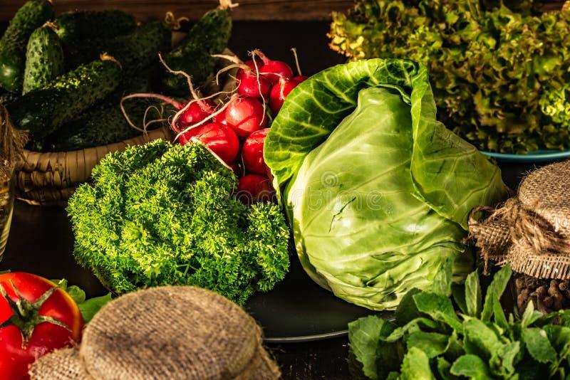 Kapuściana i kędzierzawa pietruszka W tło ogórkach, czerwona rzodkiew, sałata, pomidor Jarscy foods obraz royalty free