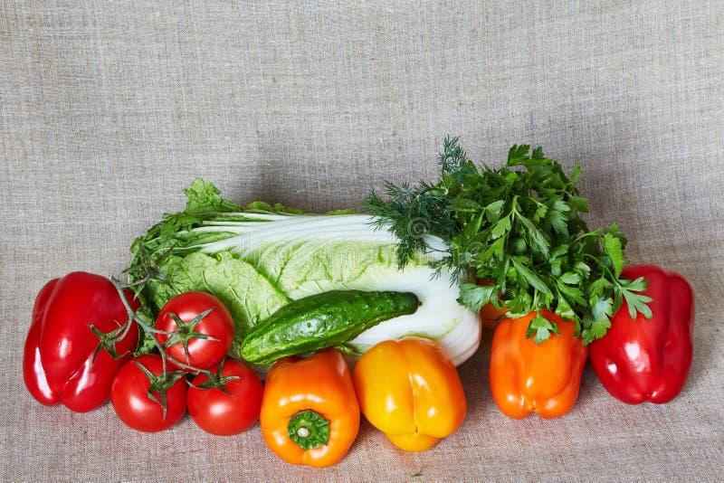 Kapusta, koper, pietruszka, pomidor, papryka, ogórek na szarej kanwie zdjęcie stock