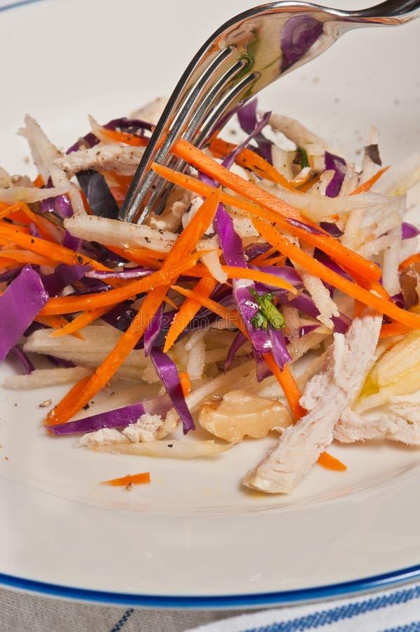 Kapusty, jabłka i marchewki slaw z kurczaka Paleo dietą, zdjęcia stock