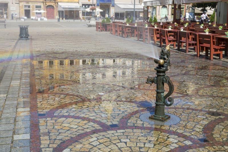Karłowata fontanna na Targowym kwadracie Wrocławski, Polska obraz stock