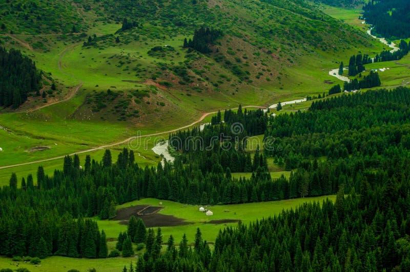 Karacolbergen, rivier, bomen, de zomer royalty-vrije stock foto's