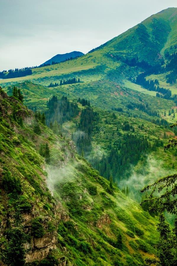 Karacolbergen, rivier, bomen, de zomer royalty-vrije stock afbeelding