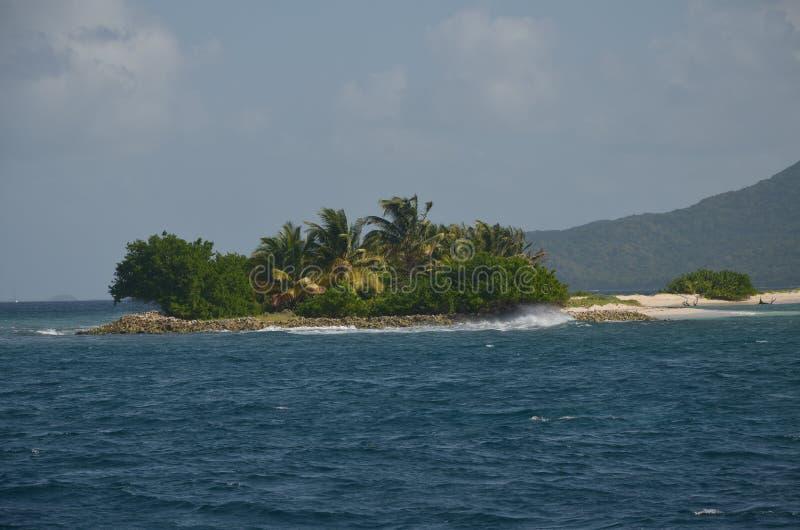 Karaibska Mała wyspa Tobago Ceys zdjęcia royalty free