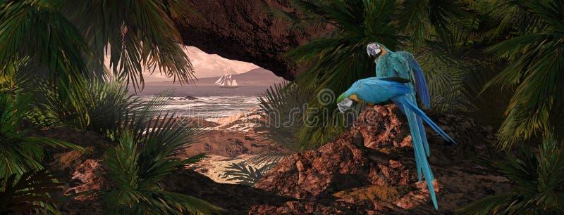 karaibskie papugi ilustracji