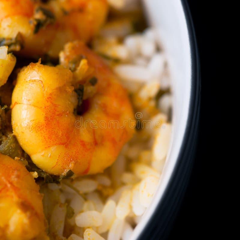 Karaibskiego smakowitego curry'ego krewetkowe krewetki i biali ryż obrazy royalty free