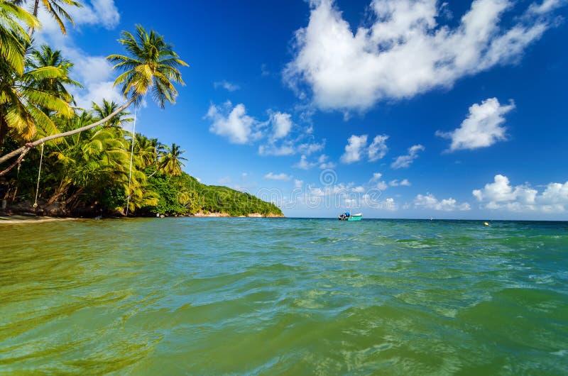 Karaiby Brzegowy widok obrazy stock