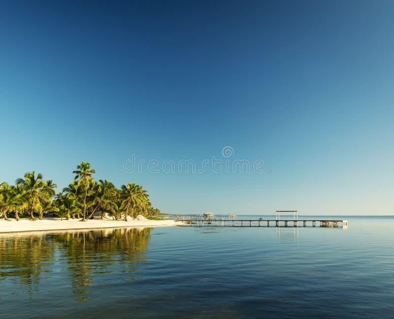 Karaiby plaża Belize obraz stock