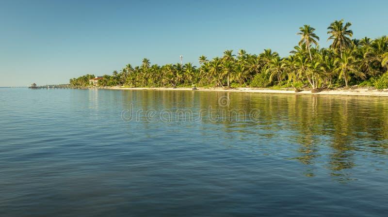 Karaiby plaża Belize zdjęcie stock