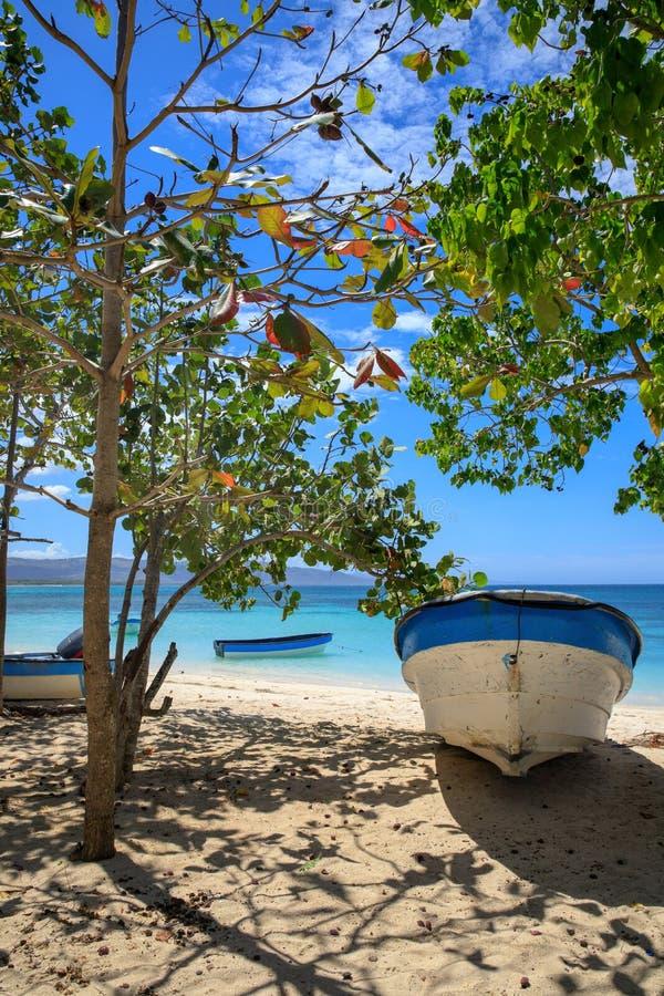 Karaiby plaża w Małej Tropikalnej wiosce rybackiej czyste wody na łodzi drzewo pola niebieskie niebo republika dominikańska fotografia stock