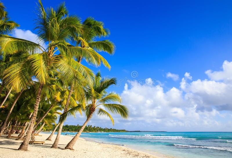 Karaiby plaża w republice dominikańskiej fotografia stock