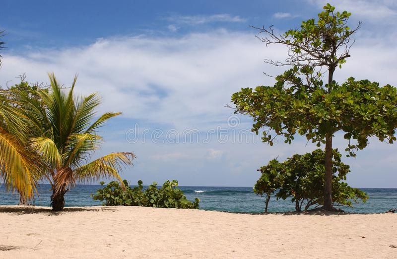 Karaiby plażowy i tropikalny morze w Ladbadee Haiti fotografia royalty free