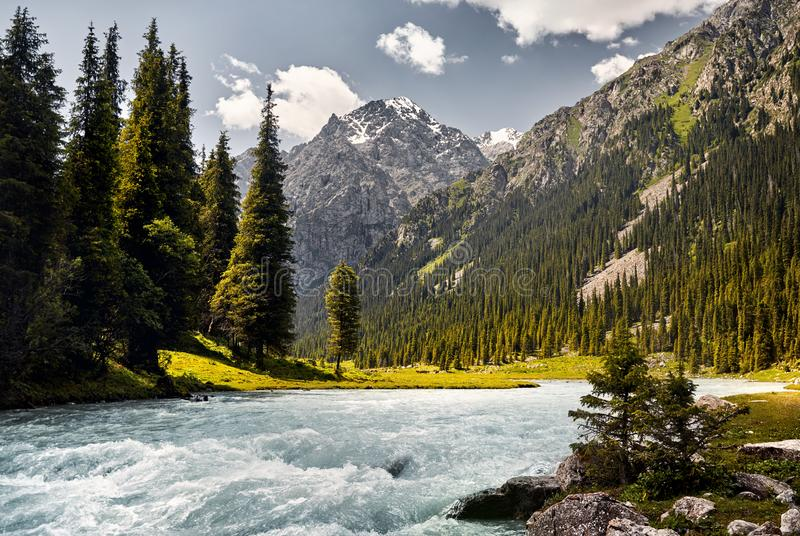 Karakol river in the mountains royalty free stock photography