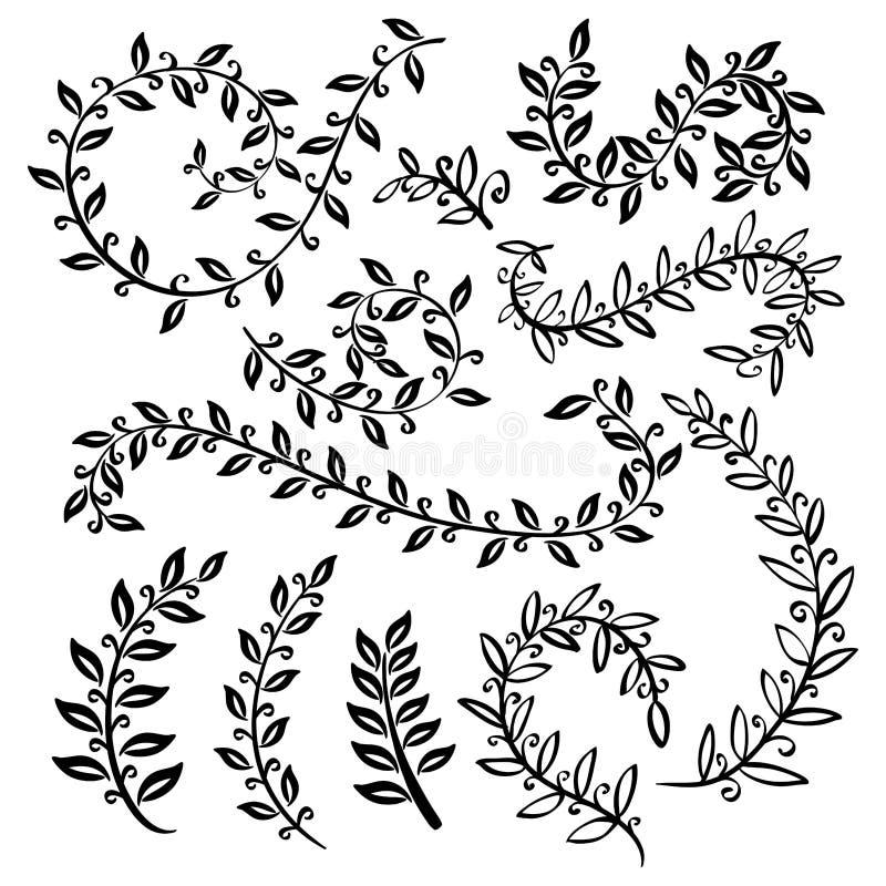 Karaktärsteckningar och monokrom tappning för blom- gräns ställde in med örter Skissa av blommor och örter Illustration för hälsn royaltyfri illustrationer